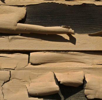 Peeling lead paint comes off of wood siding.